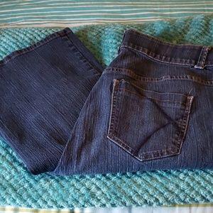 Lane Bryant Boot Cut Jean's Size 20